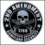 2nd Amendment HomeLand Security Patch (4H X 4W)